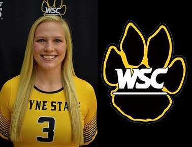 Wayne State Volleyball Finishes Opening Day 2-0