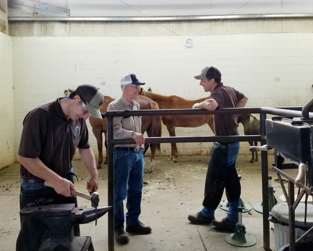 Family farrier business receives District Award
