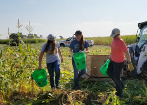 Simplot sweet corn event a boon for food banks