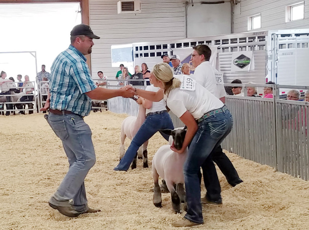 Scotts Bluff County Livestock sale brings in more than $330 thousand