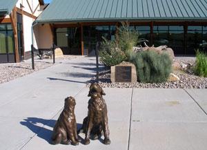 Cheyenne animal shelter decides against using pepper spray