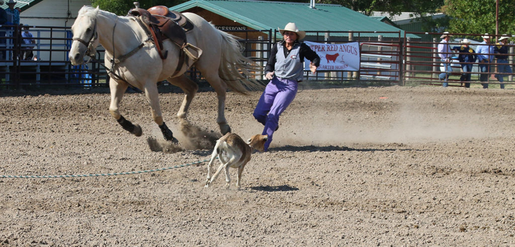 Bridgeport cowboy is all-around winner for CSC at Sheridan rodeo