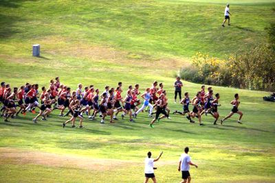 Area District Cross Country Results