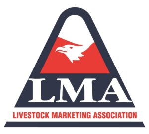 Holdenville Livestock Market to host World Livestock Auctioneer Championship qualifier October 1