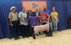 Scotts Bluff County 4-H State Fair Results 2018
