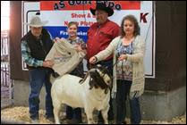 4S Goat Expo Offers Educational Seminar, Show and Sale  October 13th and 14th in North Platte