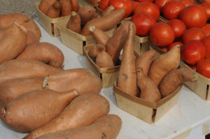 Food Safety Workshops Planned for Fruit and Vegetable Growers