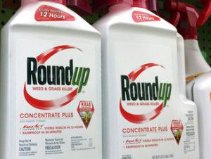 The Latest: Judge weighs jury $289 million Monsanto verdict