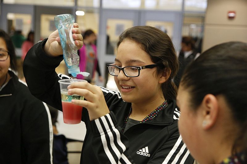 (AUDIO) LMS Science Fair featured many projects