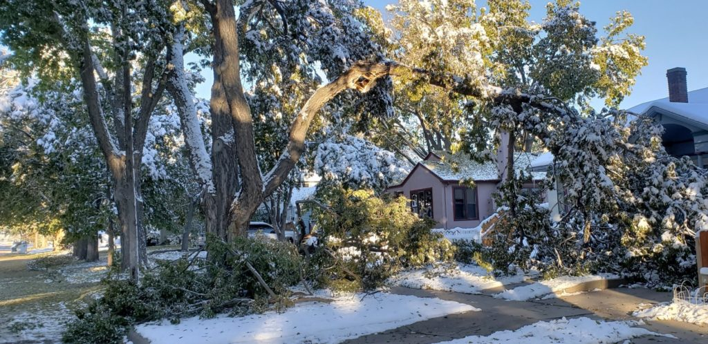 Gering extends time period for collection of tree limbs from snow storm