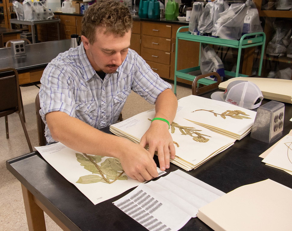 High Plains Herbarium receives National Science Foundation grant