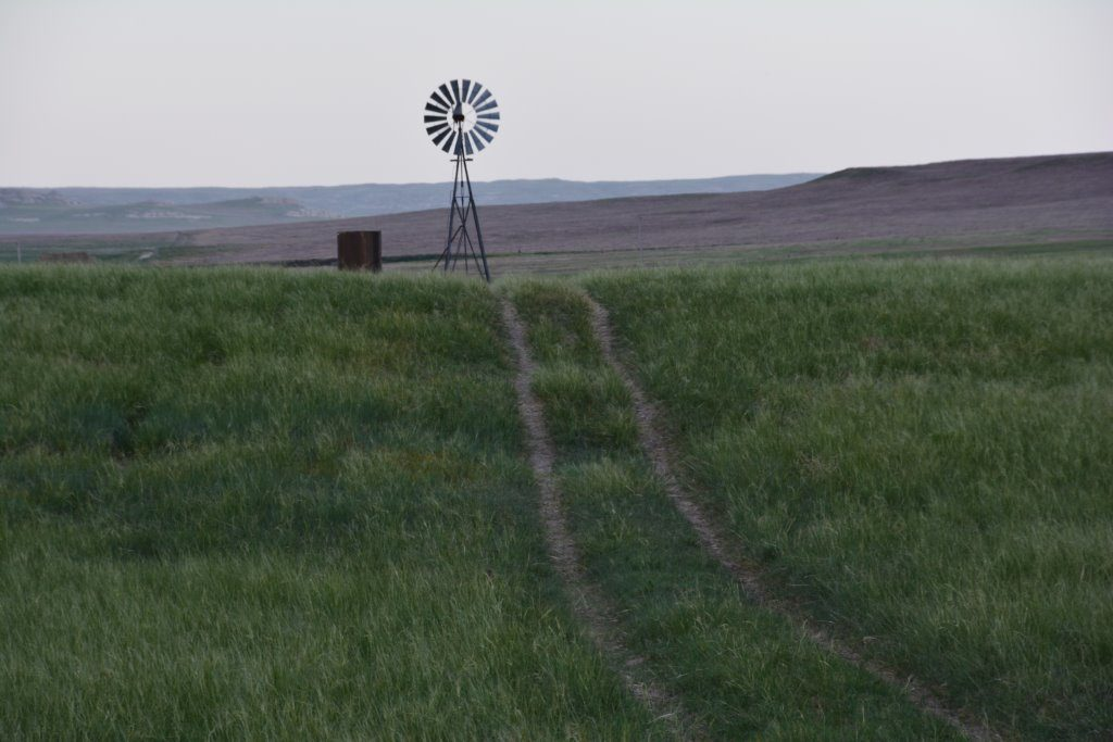 A century of science at UNL experimental range in southern Sioux County