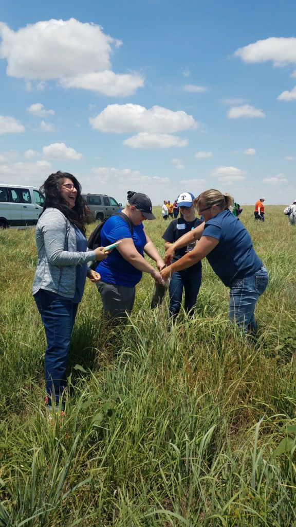 Great Plains Grazing webinar to highlight research-based agriculture science curriculum for K-12 education