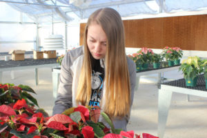 FFA students growing skills and plants in greenhouse