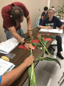 Kansas Corn 2019 Seed to STEM Workshops to Offer Three Tracks for Science Teachers