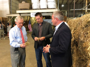 Hemp poised for another growth spurt in Kentucky *VIDEO*