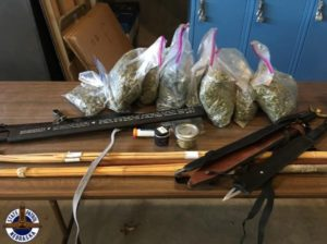 Marijuana, Mushrooms, Meth, Found During I-80 Traffic Stop