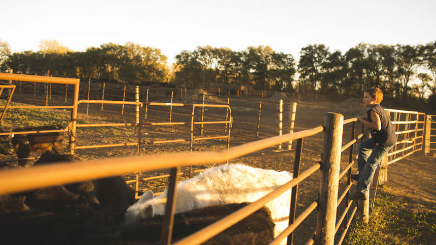 Six trends shaping the future of farming and ranching