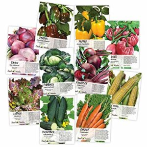 Understanding Information on Seed Packets