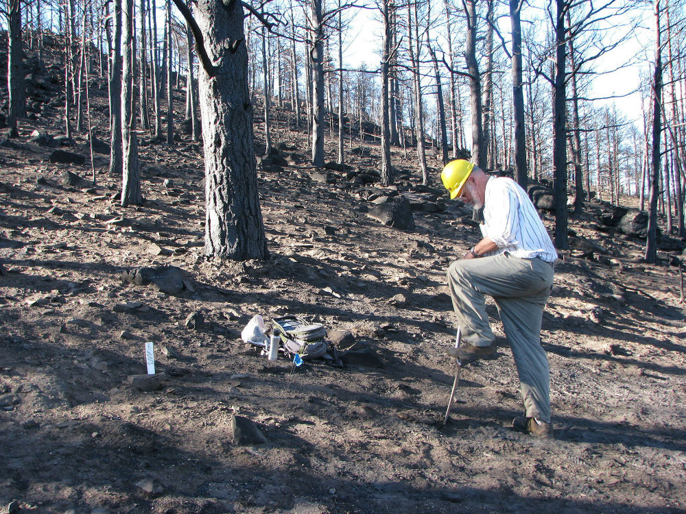 UW details post-wildfire soil microbial research