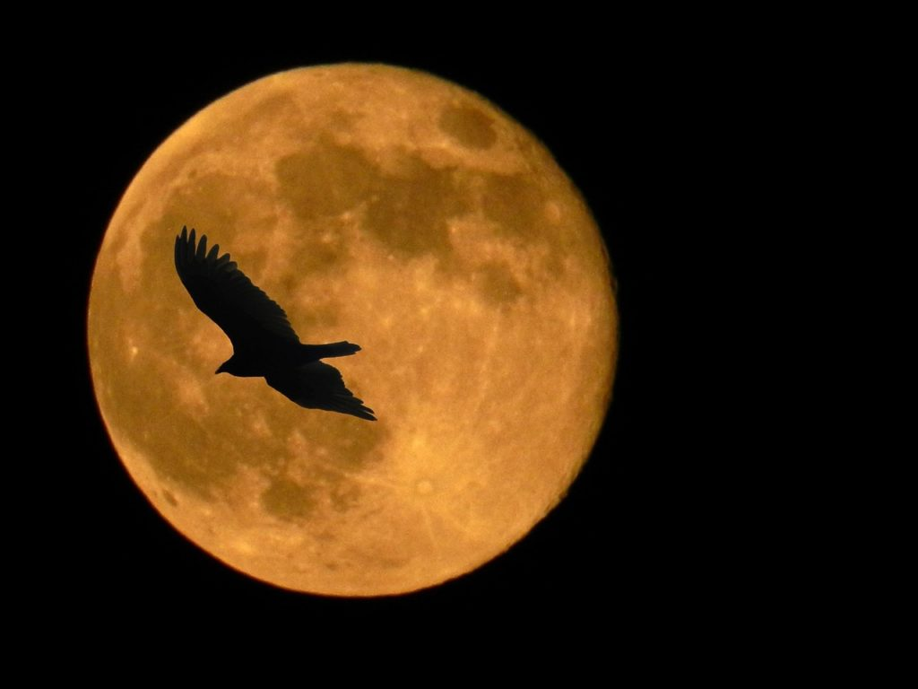 Final Supermoon of 2019 Tonight Coincides with Spring Equinox