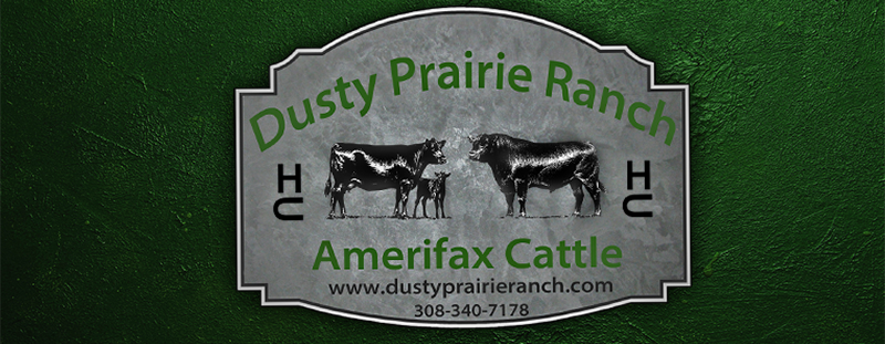 Dusty Prairie Ranch