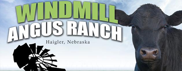 Windmill Angus Ranch
