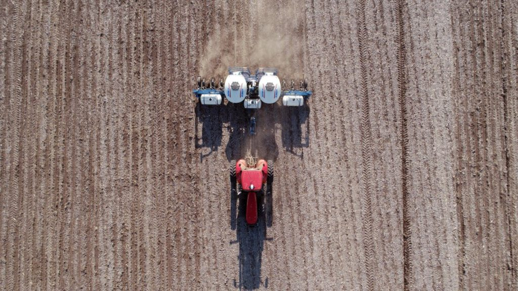 Soy farmers fearful for their future