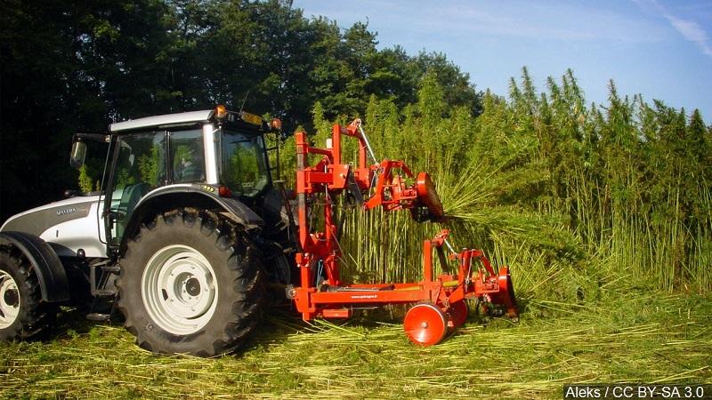 Technical amendment delays final passage of NE hemp farming legalization bill