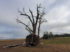 Farm damage near Farnam