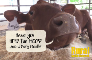Gov. Ricketts proclaims June as Dairy Month
