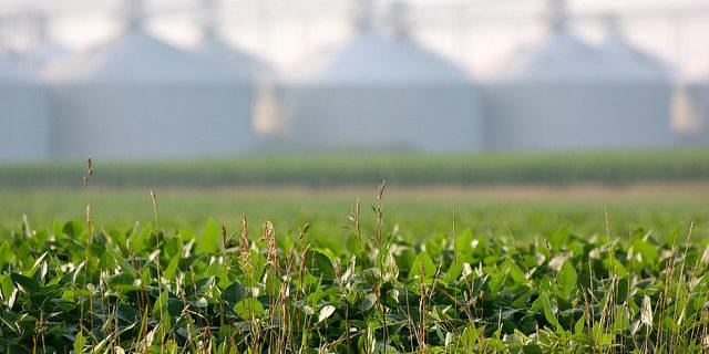 Kansas Soybean Commission to meet Aug. 26