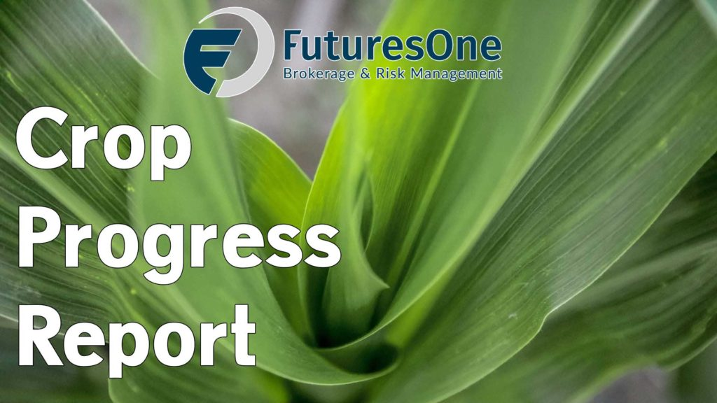 Futures One Crop Progress Report
