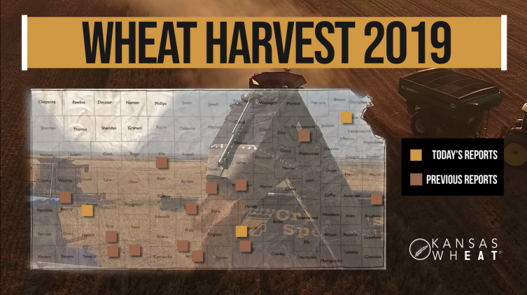 Day 5, Kansas Wheat Harvest Report
