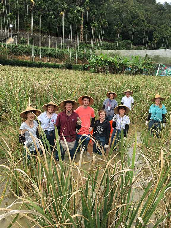 Taiwan Agricultural Youth Exchange Accepting Applications