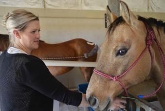 Horses, livestock restricted at NCTA campus