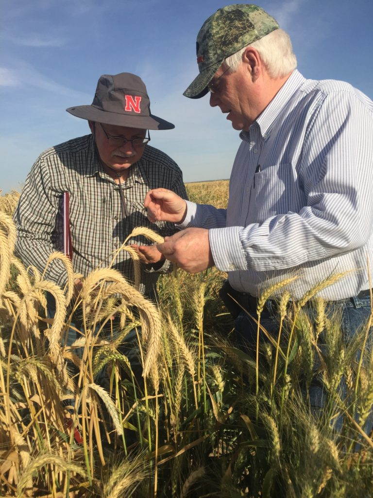 Husker Genetics: building a strong foundation