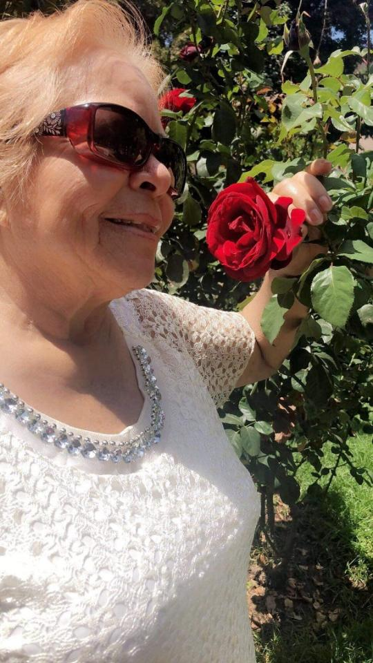 Celia G. Calderón, 71, Bridgeport