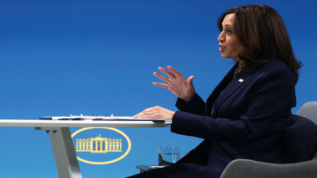 Kamala Harris slowly starts to carve out role beyond 'making sure Joe Biden is a success'