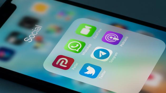 Parler, social media platform popular among conservatives, reemerges online