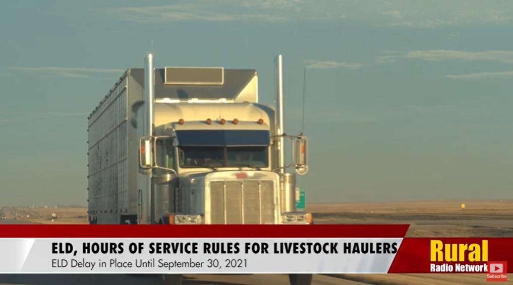 ELD delay for livestock haulers provides extended flexibility through Sept. 30