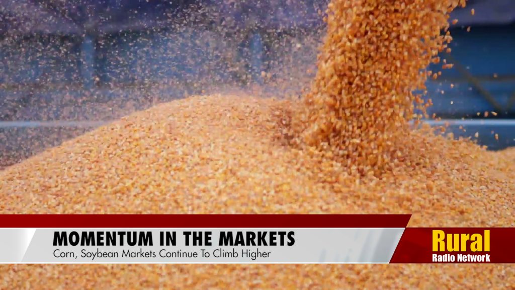 Momentum in the corn, soybean markets | Agriculture News Update