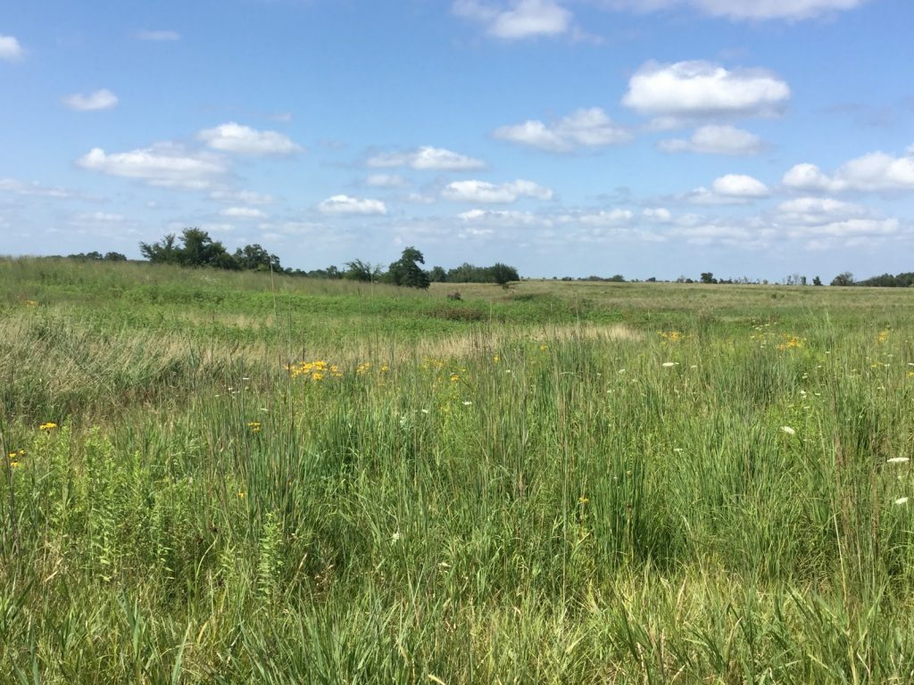 USDA launches first phase of soil carbon monitoring efforts through CRP
