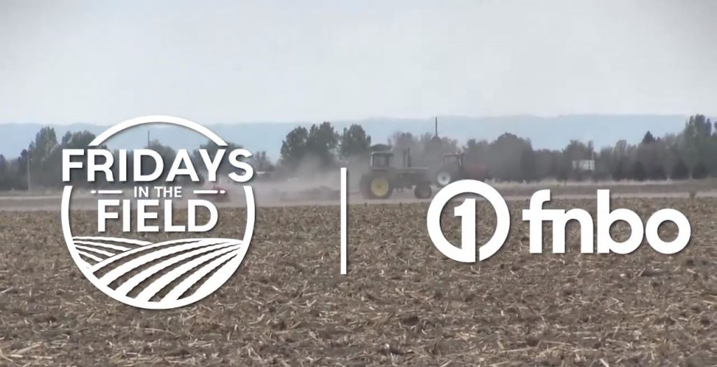 Soybeans and crop rotations serve Panhandle farmer | Fridays in the Field | Ep. 4