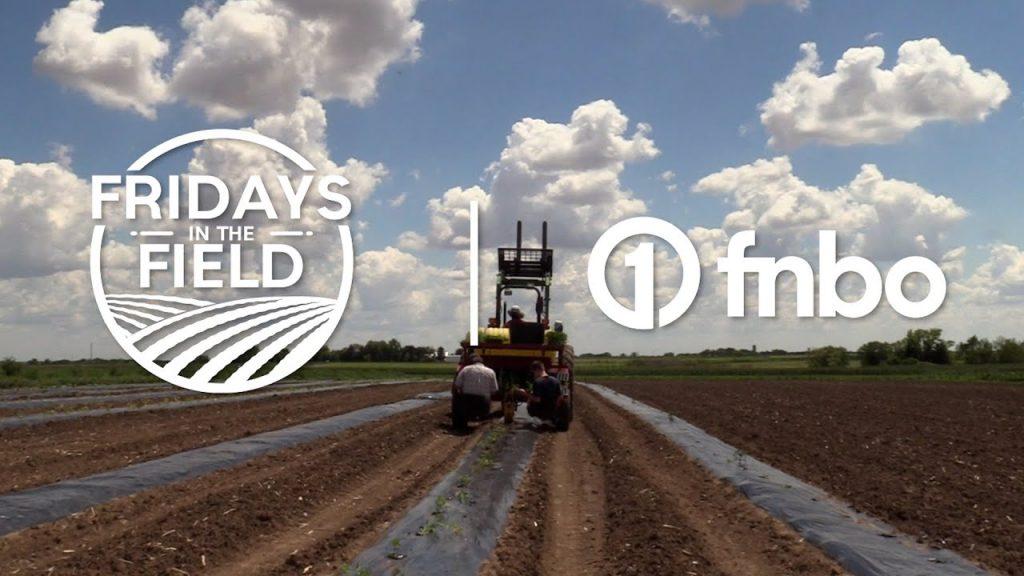 Nebraska produce farm plants watermelons, grows cool season vegetables | Fridays in the Field | Ep.5