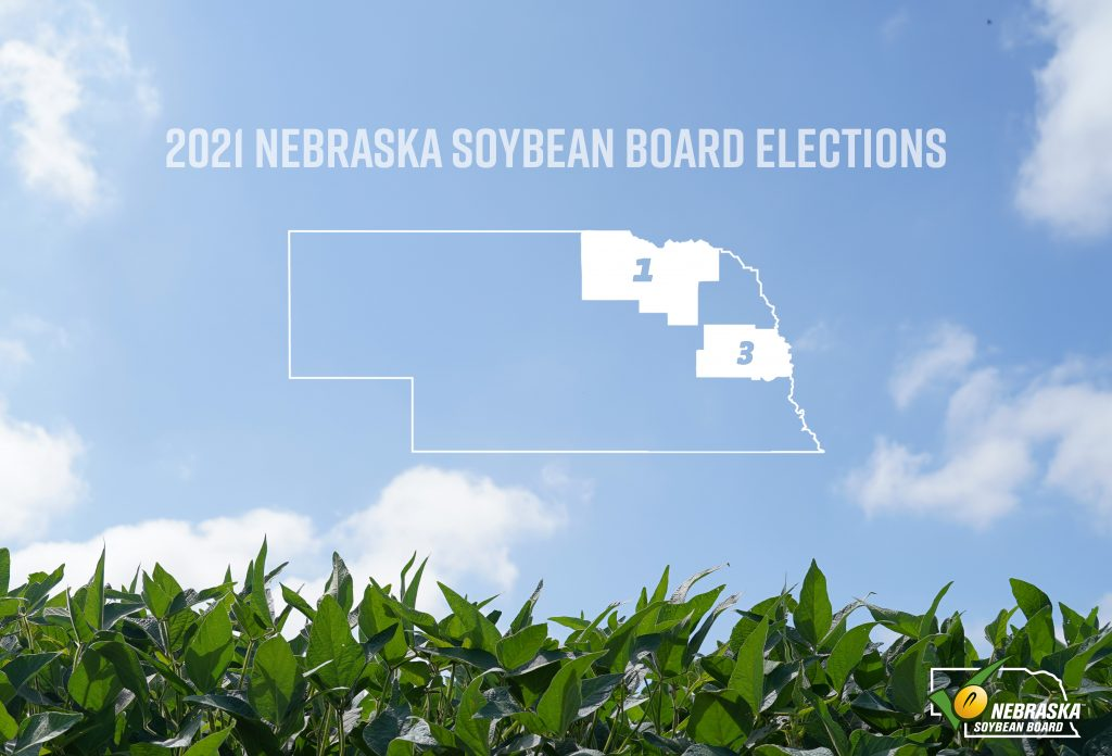 District Soybean Board election ballots have been mailed