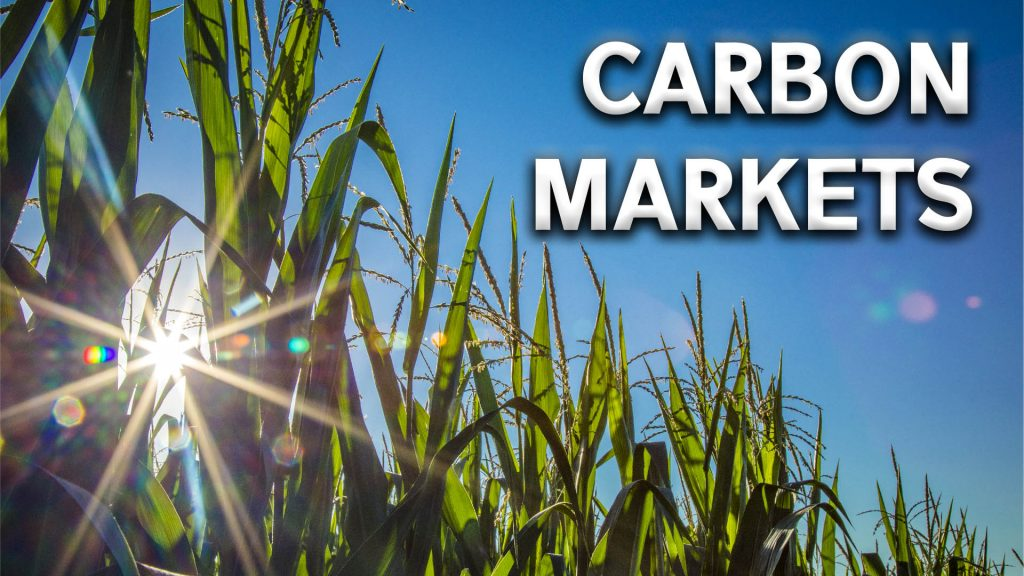 Carbon contracts overview for agriculture producers | Interview with UNL Professor Dave Aiken