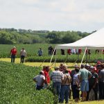 Nebraska Soybean Management Field Days set for Aug. 10-13 at four locations