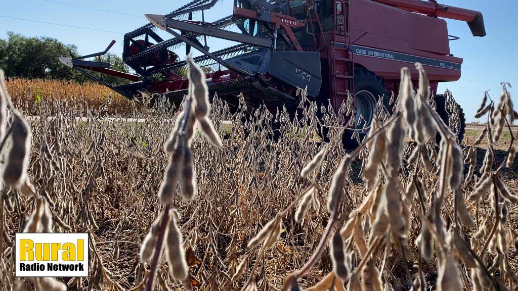Harvest progress influences market trade | Monday Morning Markets | Sept. 20, 2021