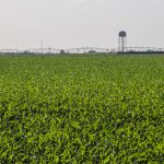 Webinar planned on Growing Climate Solutions Act, ag carbon credits